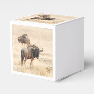 Grupo de wildebeest caja de regalos