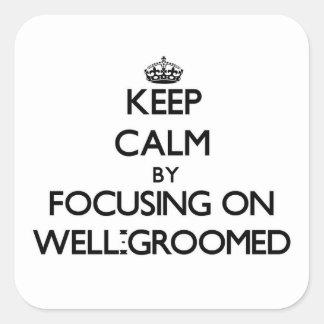 Guarde la calma centrándose en Bien-Preparar Pegatina Cuadrada