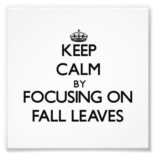Guarde la calma centrándose en las hojas de la caí fotografías