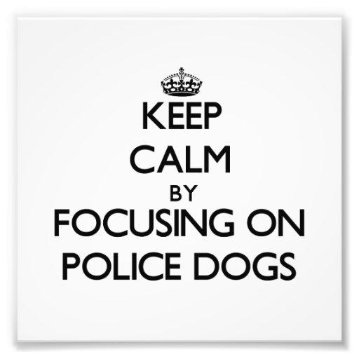 Guarde la calma centrándose en los perros policía impresión fotográfica