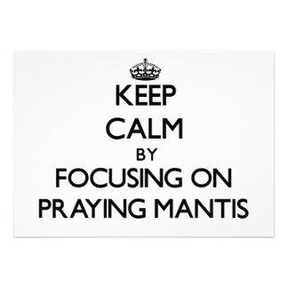 Guarde la calma centrándose en mantis religiosa