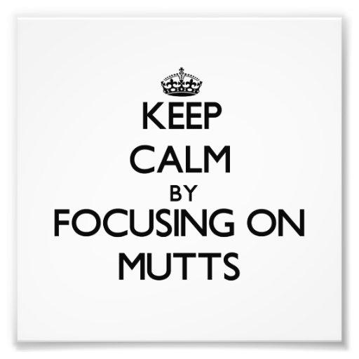 Guarde la calma centrándose en Mutts Impresion Fotografica