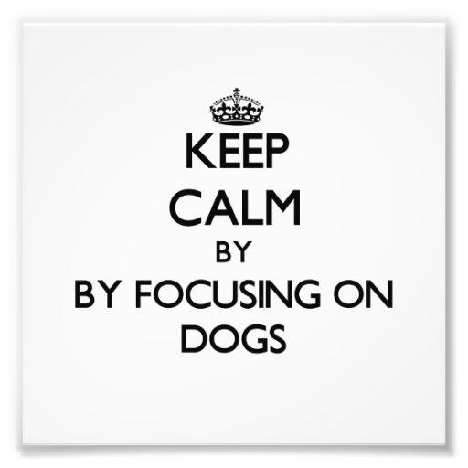 Guarde la calma centrándose en perros impresión fotográfica