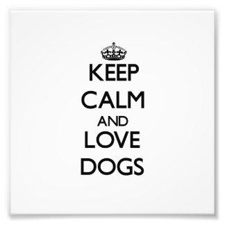 Guarde la calma y ame los perros