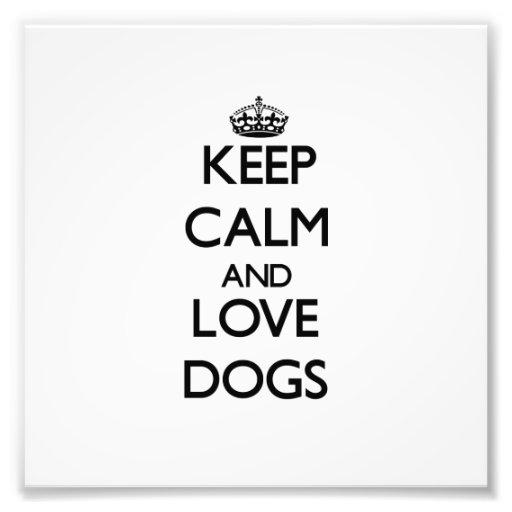 Guarde la calma y ame los perros fotos