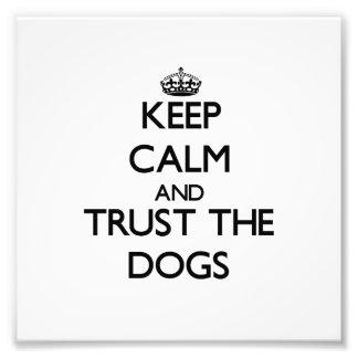 Guarde la calma y confíe en los perros