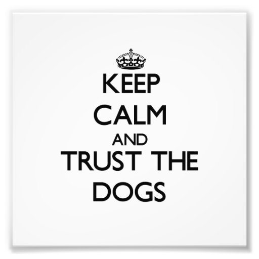 Guarde la calma y confíe en los perros foto