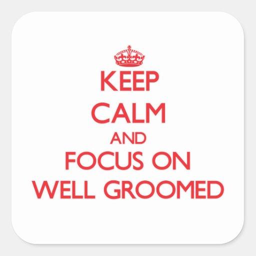 Guarde la calma y el foco en Bien-Preparar Pegatina Cuadradas Personalizada