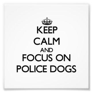 Guarde la calma y el foco en los perros policía