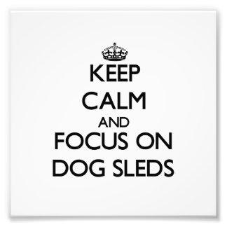 Guarde la calma y el foco en los trineos del perro fotografías