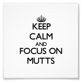 Guarde la calma y el foco en Mutts