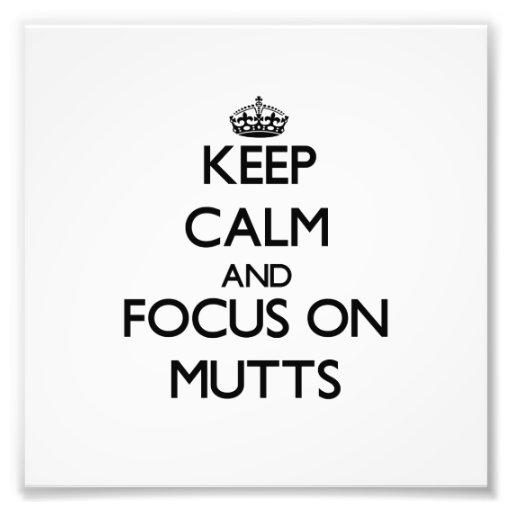 Guarde la calma y el foco en Mutts Arte Fotográfico