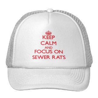Guarde la calma y el foco en ratas de alcantarilla gorra