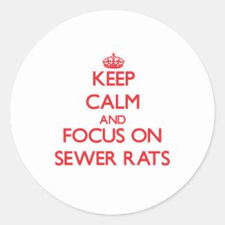 Guarde la calma y el foco en ratas de alcantarilla pegatina redonda