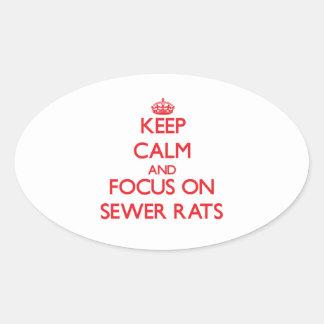 Guarde la calma y el foco en ratas de alcantarilla calcomania de oval