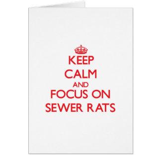 Guarde la calma y el foco en ratas de alcantarilla tarjeta de felicitación