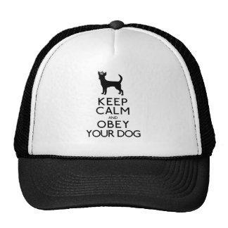 Guarde la calma y obedezca su perro gorros