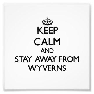 Guarde la calma y permanezca lejos de Wyverns Foto