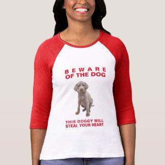 Guárdese del Perro-Este perrito robará su corazón Camiseta