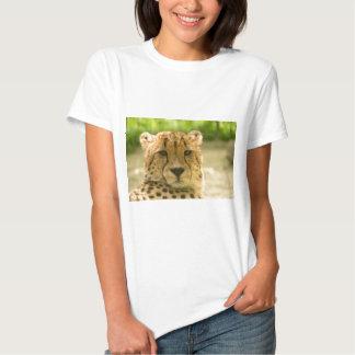 Guepardo Camisas
