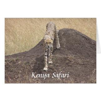 Guepardo de la madre, safari de Kenia Tarjeta De Felicitación