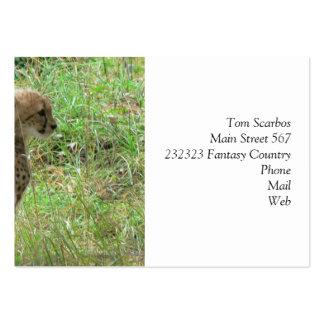 guepardo joven tarjetas de visita grandes
