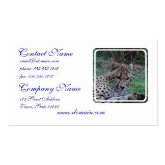 Guepardo joven tarjetas de visita