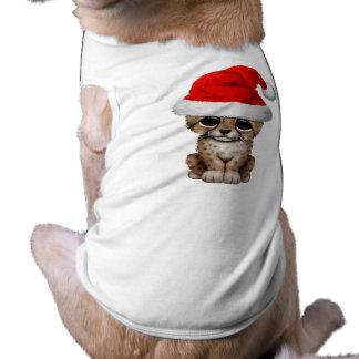 Guepardo lindo Cub que lleva un gorra de Santa