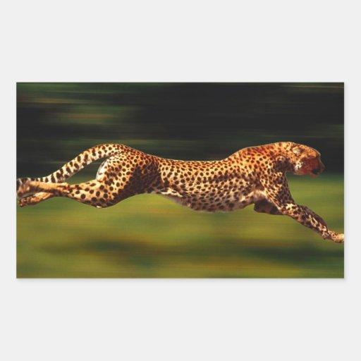 Guepardo que caza su presa rectangular pegatina