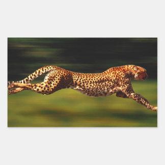 Guepardo que caza su presa pegatina rectangular