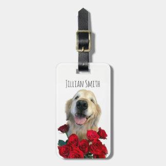 Guiñando golden retriever con los rosas etiquetas para maletas