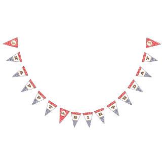 Guinga de Paisley de la bandera del feliz