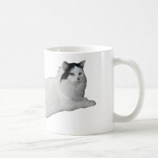Guisante de olor taza de café