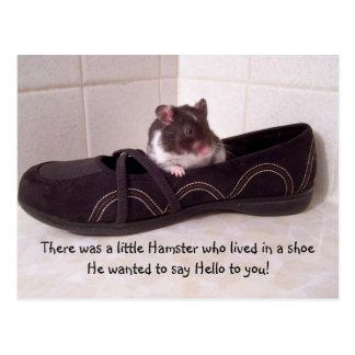 Había un pequeño hámster…. postal