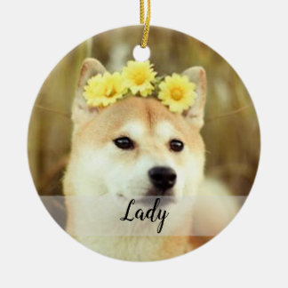 Haga su propio ornamento del mascota