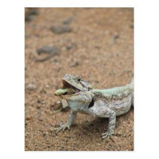 ¡Hagamos el almuerzo! El lagarto divertido hace un Tarjeta Postal