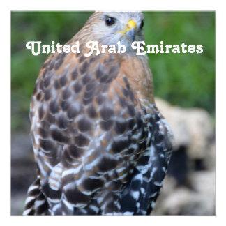 Halcón de United Arab Emirates Comunicado Personalizado