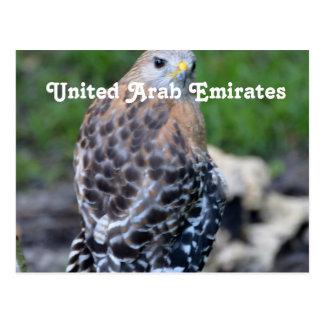 Halcón de United Arab Emirates Postal