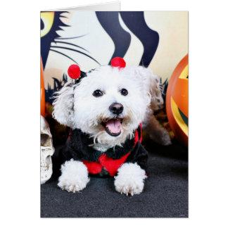 Halloween - Bichon Frise - Andi Tarjeta Pequeña
