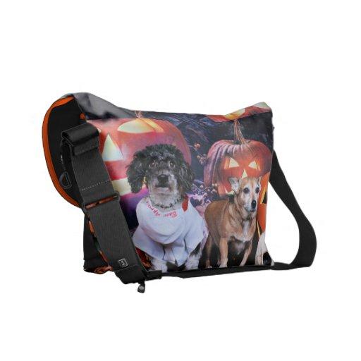 Halloween - caniche Bam - chihuahua de Molly Bolsa Messenger