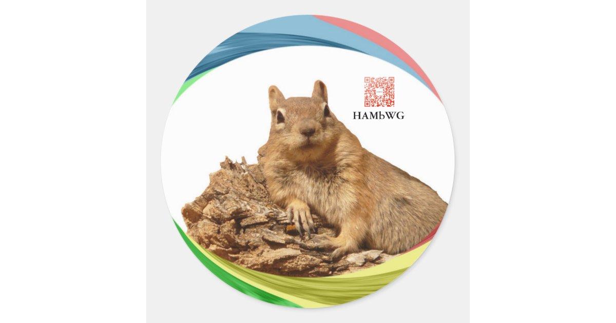 Hambwg pegatina colores del logotipo de la zazzle for Oficines racc