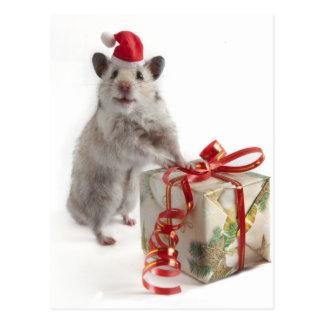 Hámster de Papá Noel con el regalo Postal