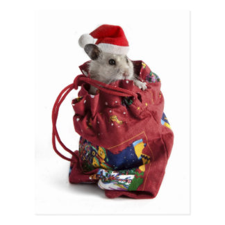 Hámster de Papá Noel Postal