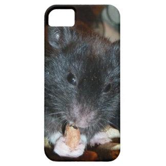 Hámster del oso negro iPhone 5 Case-Mate carcasas