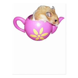 Hámster lindo en una foto rosada de la tetera postal