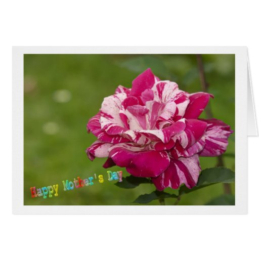 Happy Mothers Day Card Felicitación