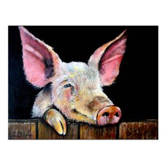 Harold (cerdo de Steptoe) Postal