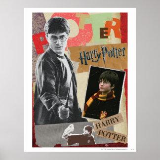 Harry Potter entonces y ahora Póster