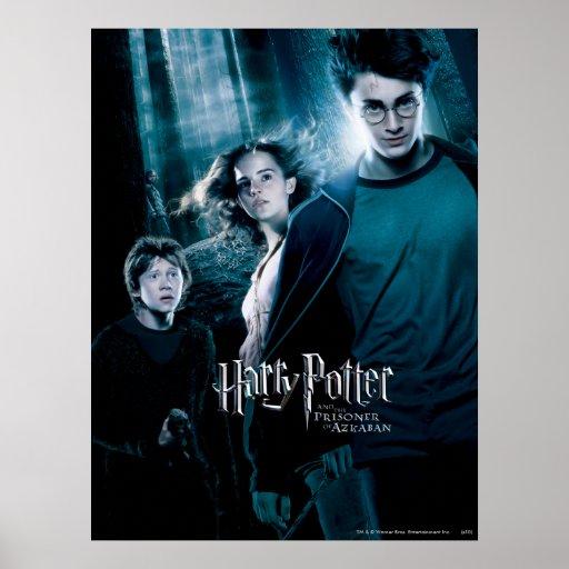 Harry Potter Ron Hermione en bosque Impresiones