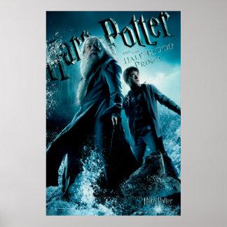 Harry Potter y Dumbledore en las rocas 1 Póster